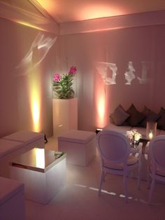 Illuminated Orchid Plants on Pedestals  - By Appointment Only Design