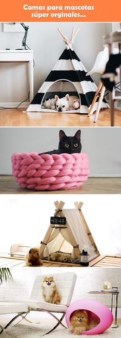 Camas para mascotas originales. Camas para perros. Camas para gatos. Camas de mascotas.
