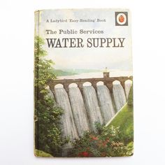 Items similar to The Public Services Water Supply by I&J Havenhand with illustrations by J. Series The Ladybird 'Easy-Reading' Book, 1969 on Etsy Easy Reading Books, I Love Reading, Ladybird Books, Children Books, Vintage Children's Books, Public Service, Craft Shop, Water Supply, Berry