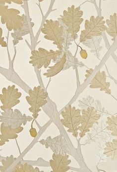 Feuille de Chene Wallpaper Ivory wallpaper with metallic silver and gilver oak tree illustration and gold acorns.