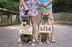 Creative DIY Save the Dates Engagement Session with Dogs Boxers