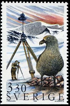 Birds Perched, Birds Flying, Birds aground - Stamp Community Forum - Page 20