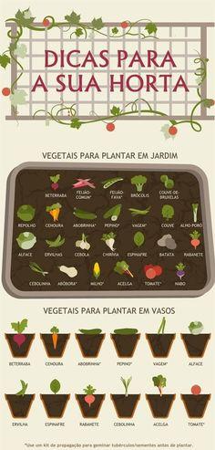 Ultimate Vegetable Gardening Guide in Handy Infographic Form Vegetable Gardening Guide: what veggies to grow for plot vs. patio gardensVegetable Gardening Guide: what veggies to grow for plot vs.