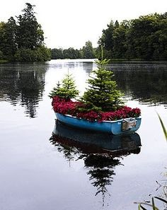Cute Christmas idea for Chelsea's room.  Find a 'shelf' sized boat and put miniature trees and poinsettia leaves or flowers in it.  Chelsea Add white lights? Chelsea means small port or wharf.