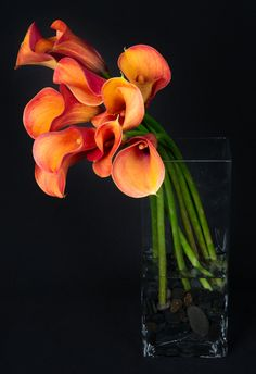This is a floral arrangement that features mango calla lilies.