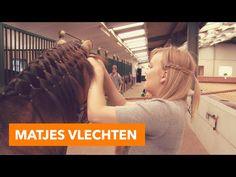Matjes vlechten | PaardenpraatTV - YouTube