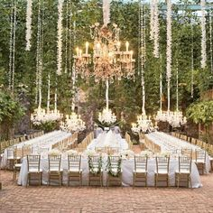 Sophisticated reception setting with hanging vines, orchids and chandeliers.