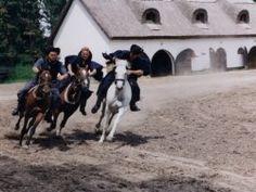 The Hungarian puszta - trip to Kecskemet - Varga Ildikó - Kecskemét - Best Budapest Tour Guides - Choose your tour guide for Budapest and Hungary! Tour Guide, Hungary, Budapest, Tours, Horses, Horse, Travel Guide, Words