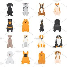 Different dogs breed vector by Vectorstockersland on @creativemarket