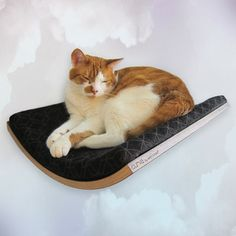 Fab.com | Your Kitty, Perched In Luxury