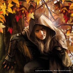 (Haldir) In a Hole in the Ground: Fridays at the Mathom-House: Magali Villeneuve