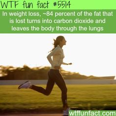 WHOA! ...How most of the fat leaves the body - Skinny People add to Global Warming!?! ...Hmm! ~WTF fun facts