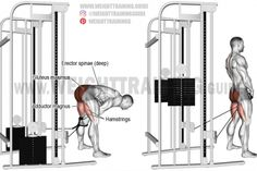 Straight-leg cable pull-through exercise