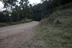 Towards Bimbadeen lookout. Mount View, Hunter Valley, NSW