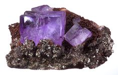 Gemmy cubes of violet-purple Fluorite on Limonite coated Calcite crystal matrix.  From Mapimi, Durango, Mexico.