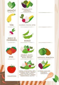 A valaha volt legfontosabb táblázat, amit konyhakertész látott. Planting Vegetables, Vegetable Garden, Companion Planting, Garden Design, Home And Garden, Plants, Gardening, School, Google