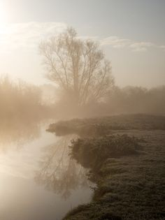 Mist on Grantchester meadows by Quentin Stafford-Fraser, via 500px