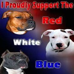 patriotic pit bulls!  hating them is just unamerican.