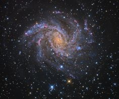 The Fireworks Galaxy. Also known as NGC 6946 the big beautiful spiral galaxy is located just 10 million light-years away, behind a veil of foreground dust and stars in the high and far-off constellation of Cepheus. From our vantage point in the Milky Way Galaxy, we see NGC 6946 face-on. In this colorful cosmic portrait, the galaxy's colors change from the yellowish light of old stars in the core to young blue star clusters and reddish star forming regions along the loose, fragmented spiral…