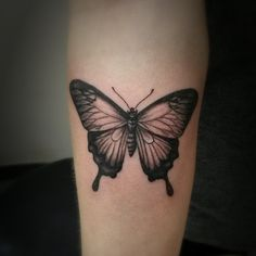 Butterfly Tattoo Sasha Roussel Black Gold Tattoo Co.