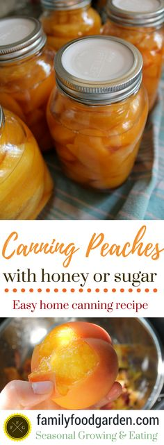 Canning Peaches in Honey or Sugar