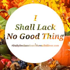 #DailyDeclarations I Shall Lack No Good Thing! ✡The lions may grow weak and hungry, but those who seek the Lord lack no good thing . -Psalm 34:10 #Believers #Blessed #Scriptures #SpeakLife #WordPower #Affirmation