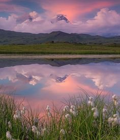Nature Aesthetic, Aesthetic Photo, Aesthetic Pictures, Pink Aesthetic, Aesthetic Drawing, Beautiful World, Beautiful Places, Beautiful Sites, Beautiful Gorgeous