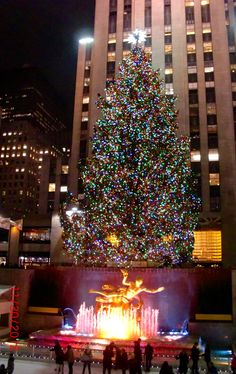 Rockefeller Center Christmas Tree #NYC 20121130
