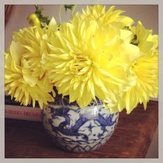 #yellowdahlias in blue and white Floral by Jackson Durham #jacksondurham #dahlia #blueandwhite #blueandwhiteporcelain #floral #flowers #floraldesign #events #eventdesign