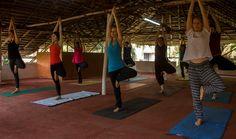 School of Santhi Yoga Trivandrum #schoolofsanthiyogatrivandrum http://yogacentersindia.com/school-santhi-yoga-trivandrum/