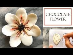 How to Arrange Chocolate Petals on a Cake Chocolate Work, Chocolate Candy Melts, Modeling Chocolate, How To Make Chocolate, Homemade Chocolate, Chocolate Recipes, Cake Chocolate, Creative Cake Decorating, Cake Decorating Techniques