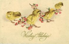 Old Easter Post Card — Wesołego Alleluja (800x513)