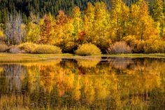 The colors of Autumn were on full display at this little pond in the Sierra Nevada mountains. I really enjoyed being there and I hope you like it too. Thanks for all your support!