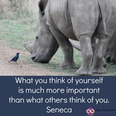 What you think of yourself is much more important than what others think of you. - Seneca