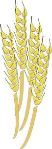 PublicDomainVectors.org-Vector clipart de gaines de blé. Image en couleur du jaune blé du champ.