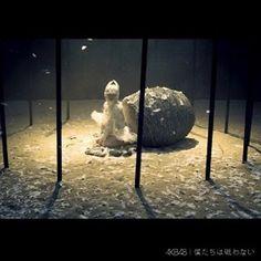 #AKB48 僕たちは戦わない MVとCDジャケットの羽根ウィッグと、羽根ヘアアクセサリーなどをSAKIE.が製作しました。 .  AKB48 musicvideo&cd cover Feather wig&fether hair accessory made by SAKIE.  #fether #sakie #sakiewig #hairaccessory #akb #僕たちは戦わない #mv #musicvideo #pv #cd #cdjk #japanese #idol