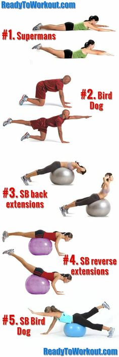 Swiss Ball Back Excercise Routine