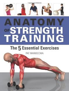 Anatomy of Strength Training The Five Essential Exercises http://www.mysharedpage.com/anatomy-of-strength-training-the-five-essential-exercises