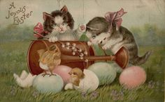 Vintage Easter Kittens & Chicks 1910 Greetings Postcard Card Victorian Embossed #Easter