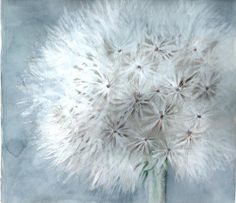 Dandelion 2 2008 - Watercolours With WOW
