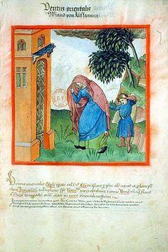 Le mauvais temps - tacuinum sanitatis - XVeme siècle