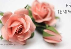 How to make easy paper rose, free template