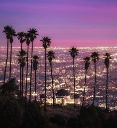 Los Angeles at night Night Aesthetic, City Aesthetic, Travel Aesthetic, Los Angeles At Night, Los Angeles Sunset, Los Angeles Skyline, Los Angeles Wallpaper, California Sunset, California Travel