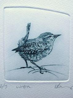 Drypoint Wren Tiny bird by Lynn Bailey Drypoint Etching, Illustrations, Illustration Art, Etching Prints, Collagraph, Bird Drawings, Bird Prints, Bird Art, Printmaking