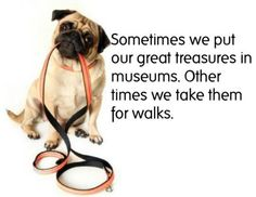 .Sometimes we put our greatest treasures in museums. Other times we take them for walks.