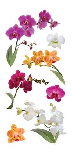"Orchids 2"" Sticker"