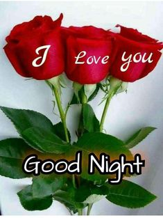 Latest 121 Good night love images in HD Good Night Love Messages, Good Night Thoughts, Lovely Good Morning Images, Good Night Quotes Images, Good Night Flowers, Good Night Love Images, Good Night Dear, Good Night Prayer, Romantic Good Night