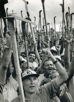 Sebastião Salgado. Workers celebrate government approval of...