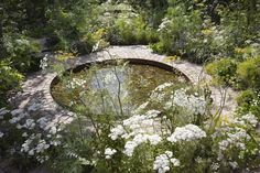 The Health & Wellbeing Garden designed by Alexandra Noble for the Hampton Court Flower Show 2018 - winner of the People's Choice Award Hampton Court Flower Show, Rhs Hampton Court, Landscape Design, Garden Design, Alchemilla Mollis, Herb Farm, Pond Landscaping, Backyard Water Feature, London Garden