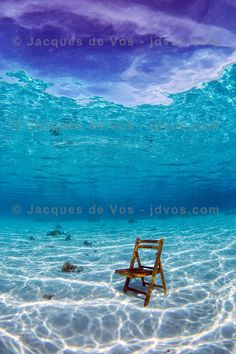 Thinking Chair - Red Sea Seascape